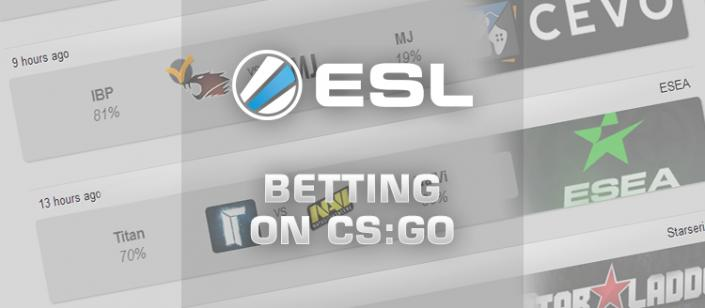 Betting skins csgo lounge companion betting bonus comparison